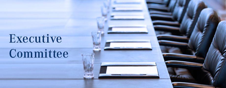 کمیته  اجرایی